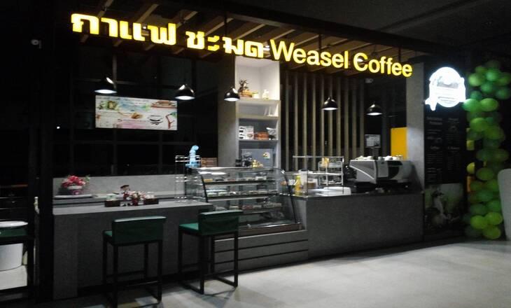 ออกแบบร้านกาแฟ ชะมด